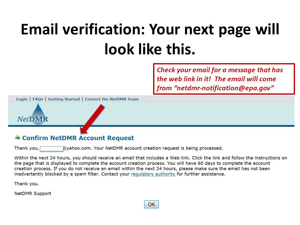 Email verification: Your next page will look like this.