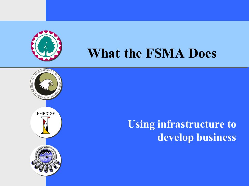 FMB/CGF What the FSMA Does Using infrastructure to develop business