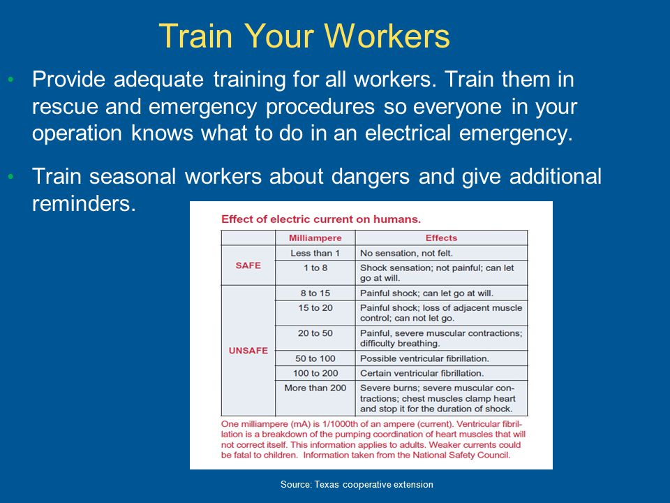 Train Your Workers Provide adequate training for all workers.