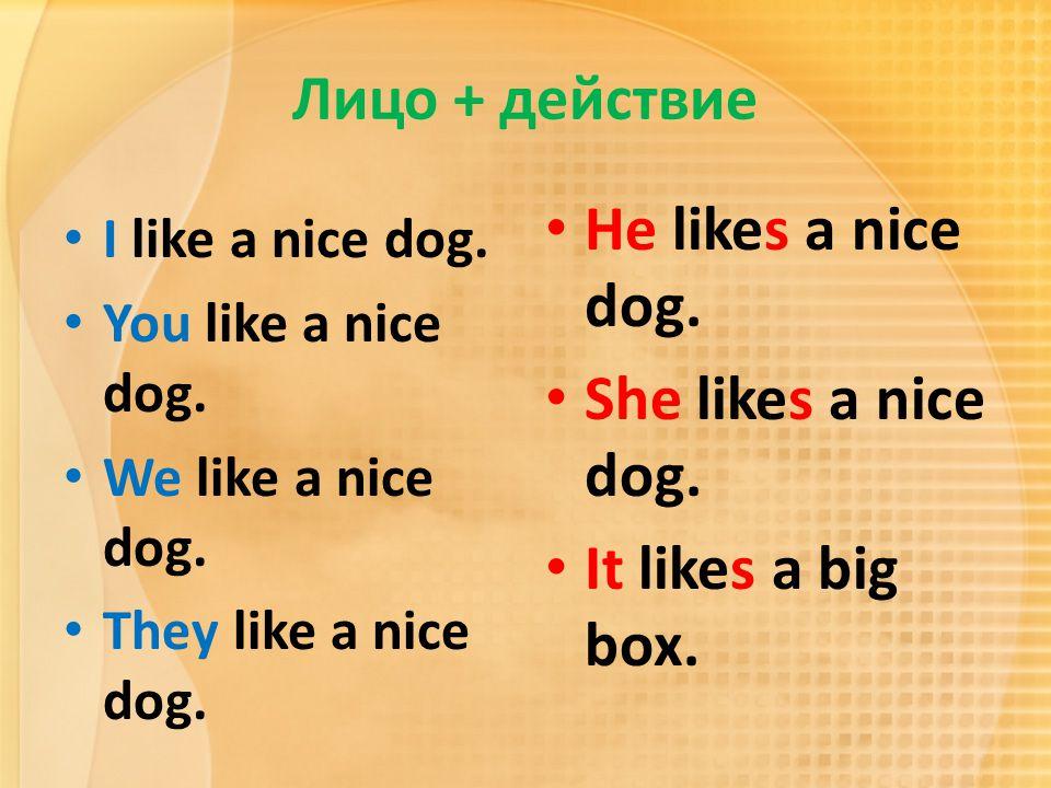 Лицо + действие I like a nice dog. You like a nice dog. We like a nice dog. They like a nice dog. He likes a nice dog. She likes a nice dog. It likes