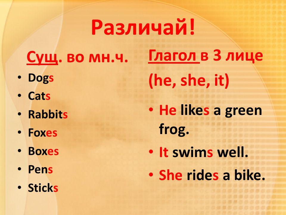 Различай! Сущ. во мн.ч. Dogs Cats Rabbits Foxes Boxes Pens Sticks Глагол в 3 лице (he, she, it) He likes a green frog. It swims well. She rides a bike