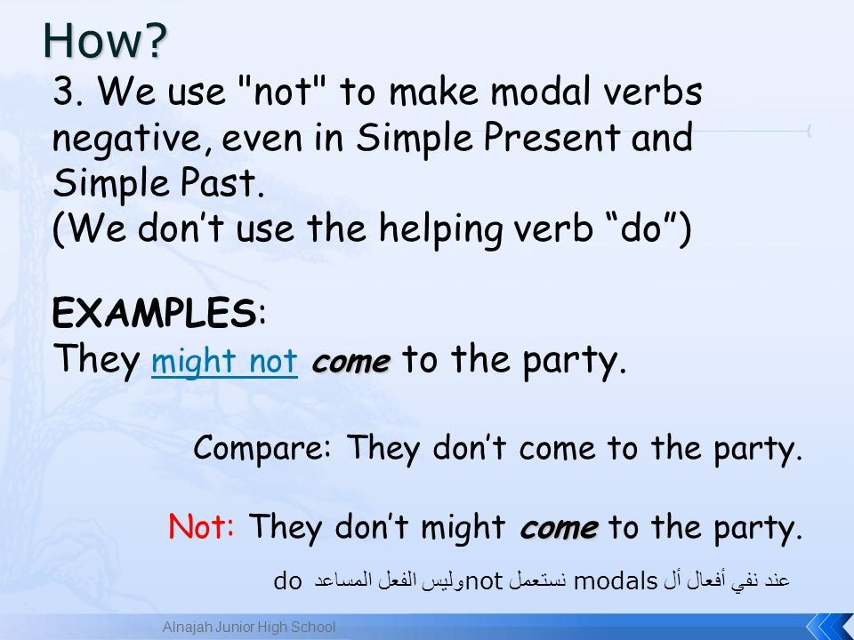 3.We use not to make modal verbs negative, even in Simple Present and Simple Past.