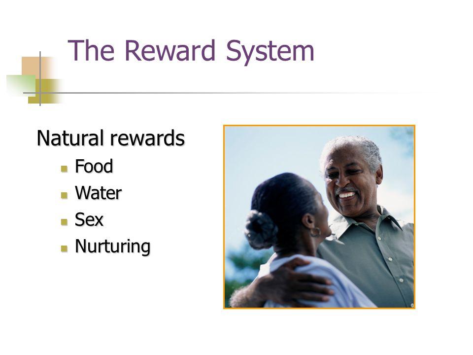 9 The Reward System Natural rewards Food Food Water Water Sex Sex Nurturing Nurturing