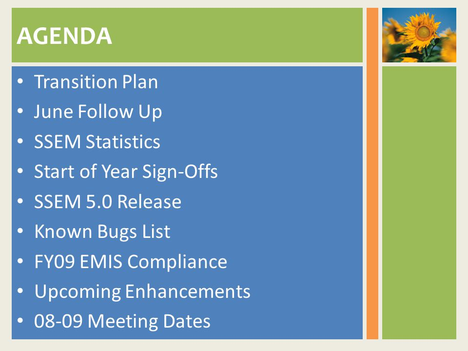 AGENDA Transition Plan June Follow Up SSEM Statistics Start of Year Sign-Offs SSEM 5.0 Release Known Bugs List FY09 EMIS Compliance Upcoming Enhancements Meeting Dates