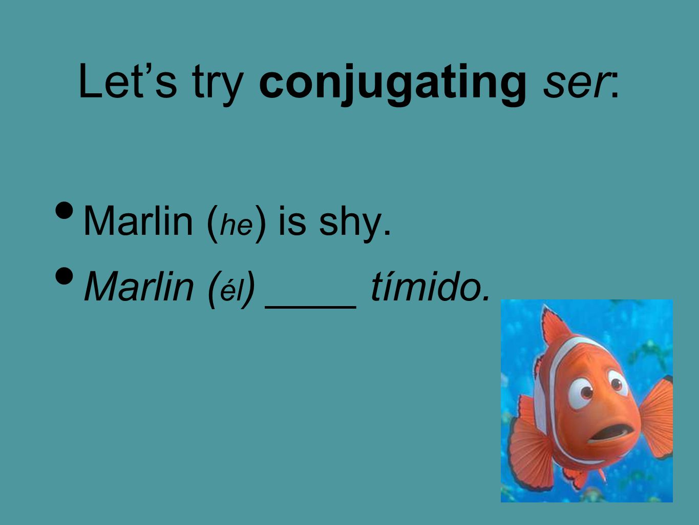 Let's try conjugating ser: Marlin ( he ) is shy. Marlin ( él ) ____ tímido.