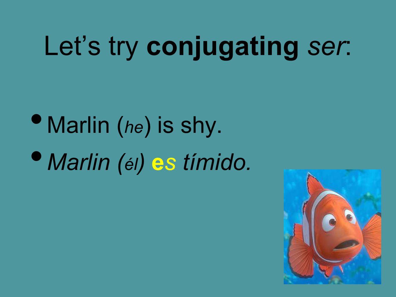 Let's try conjugating ser: Marlin ( he ) is shy. Marlin ( él ) es tímido.