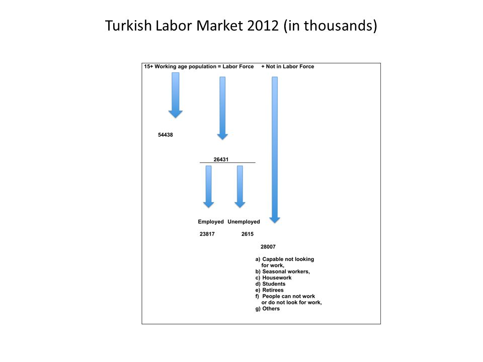 Turkish Labor Market 2012 (in thousands)