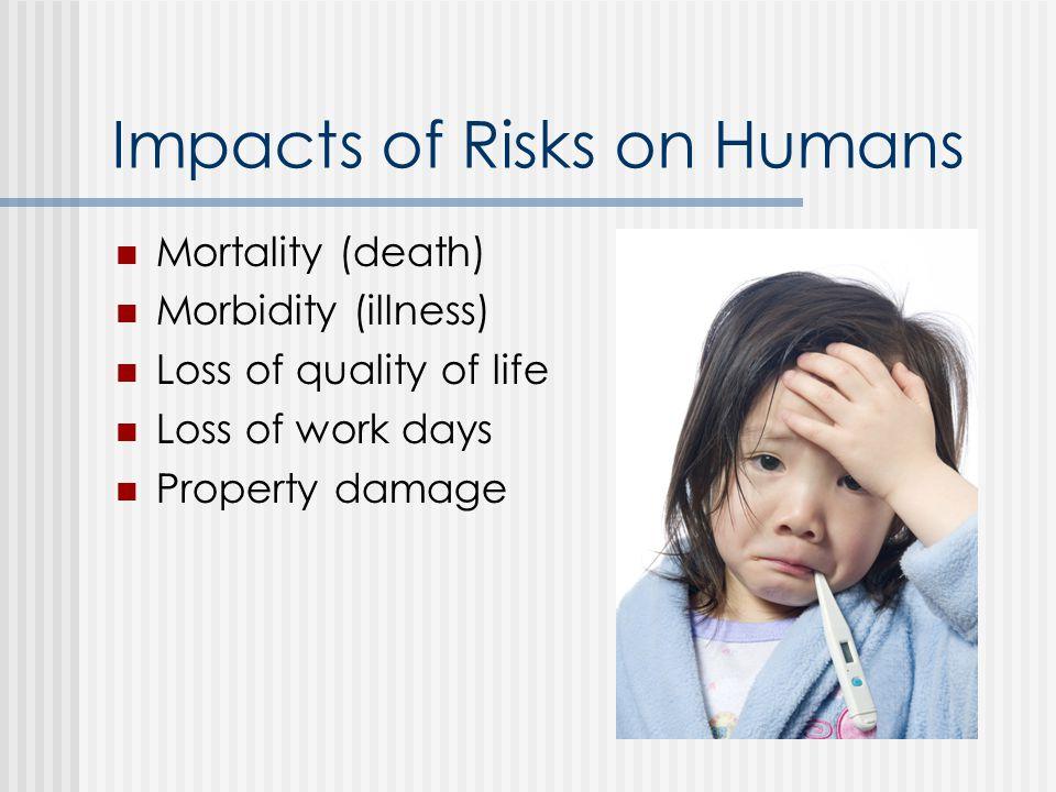 Risk Assessment vs. Management