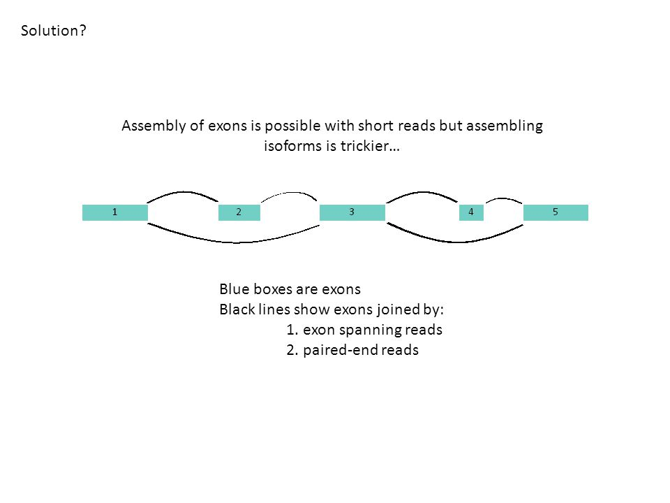 Blue boxes are exons Black lines show exons joined by: 1. exon spanning reads 2. paired-end reads Solution? Assembly of exons is possible with short r