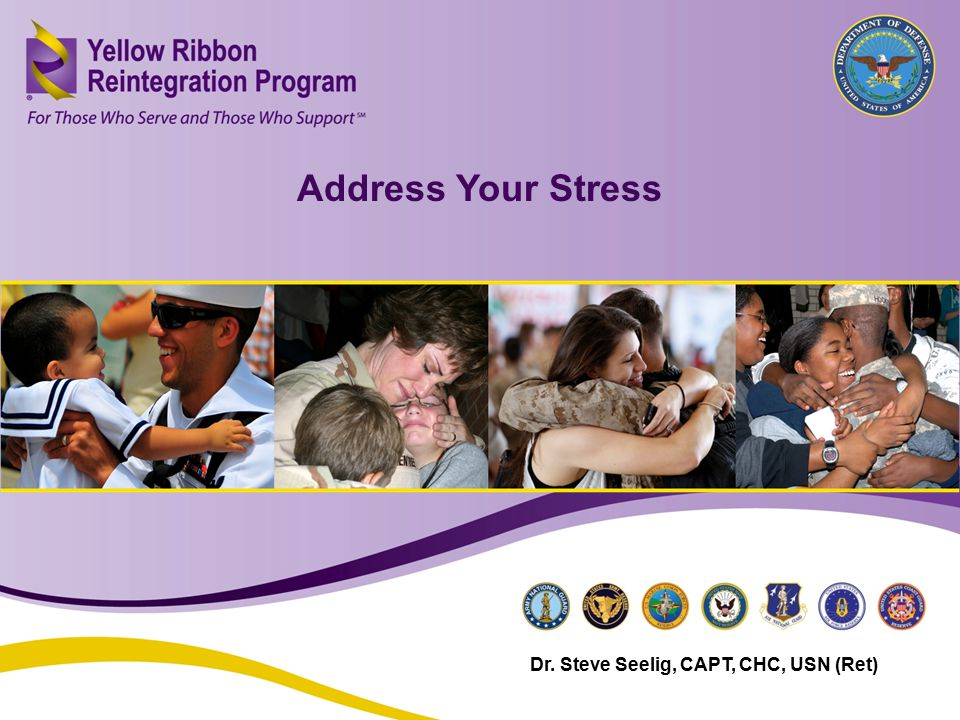 Address Your Stress (JAN 2013) Address Your Stress Dr. Steve Seelig, CAPT, CHC, USN (Ret)
