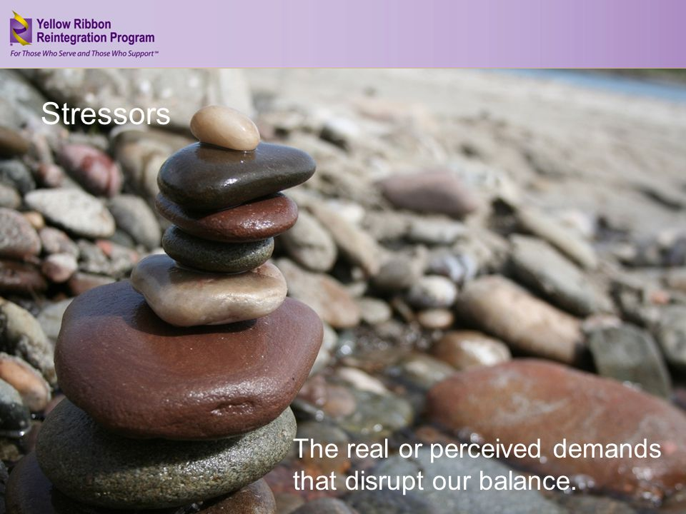 Address Your Stress (JAN 2013) The real or perceived demands that disrupt our balance. Stressors