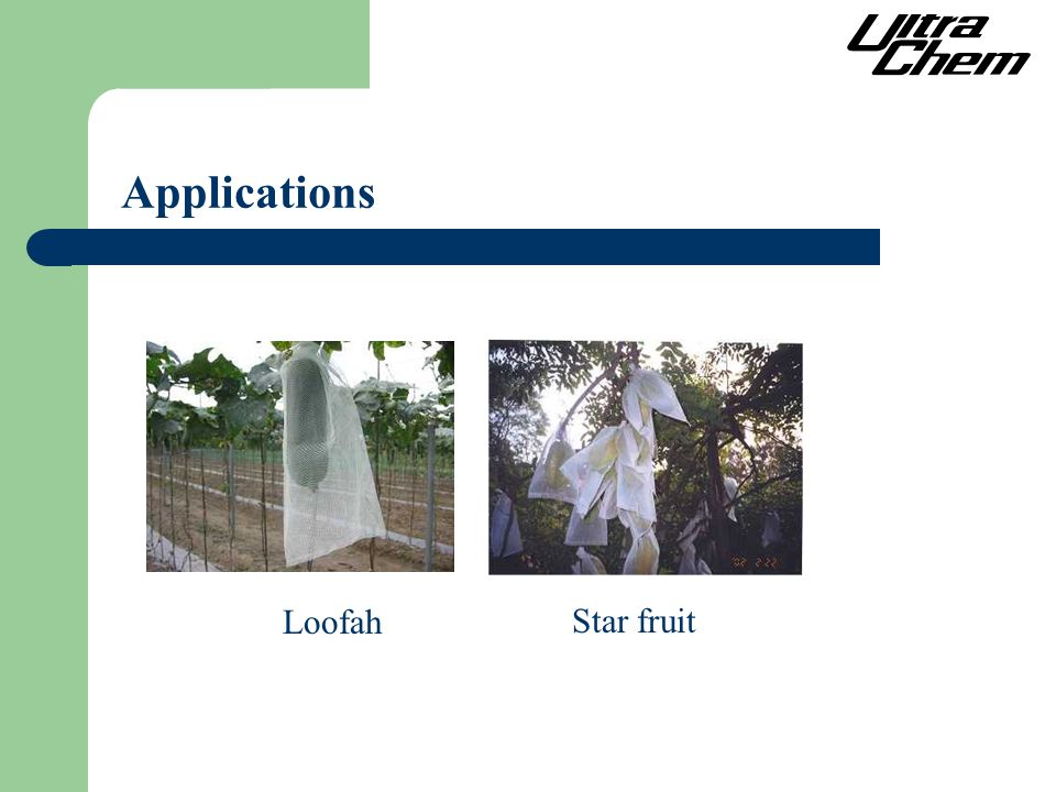 Loofah Star fruit Applications