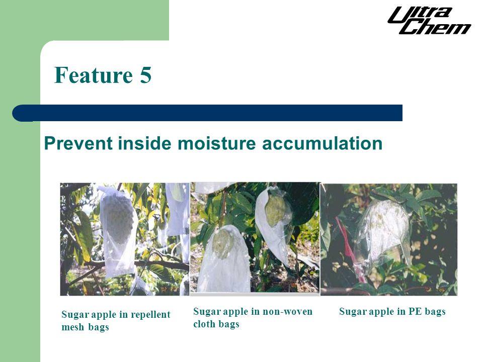 Feature 5 Prevent inside moisture accumulation Sugar apple in non-woven cloth bags Sugar apple in PE bags Sugar apple in repellent mesh bags