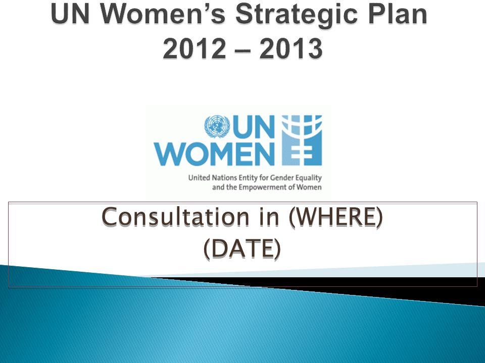 Comparative advantage: What are UN Women's unique strengths.