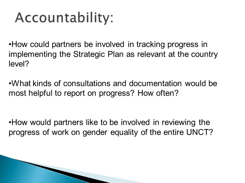 How could partners be involved in tracking progress in implementing the Strategic Plan as relevant at the country level? What kinds of consultations a