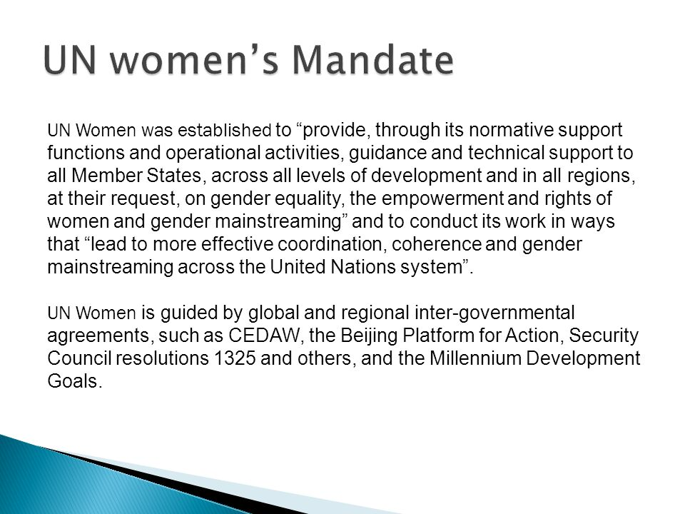 The General Assembly, the Economic and Social Council and the Commission on the Status of Women constitute the multi-tiered intergovernmental governance structure for the normative support functions and provide normative policy guidance to the Entity; The General Assembly, the Economic and Social Council and the Executive Board of the Entity constitute the multi-tiered intergovernmental governance structure for the operational activities and provide operational policy guidance to the Entity;