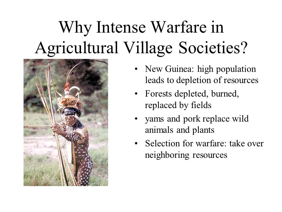 Why Intense Warfare in Agricultural Village Societies? New Guinea: high population leads to depletion of resources Forests depleted, burned, replaced