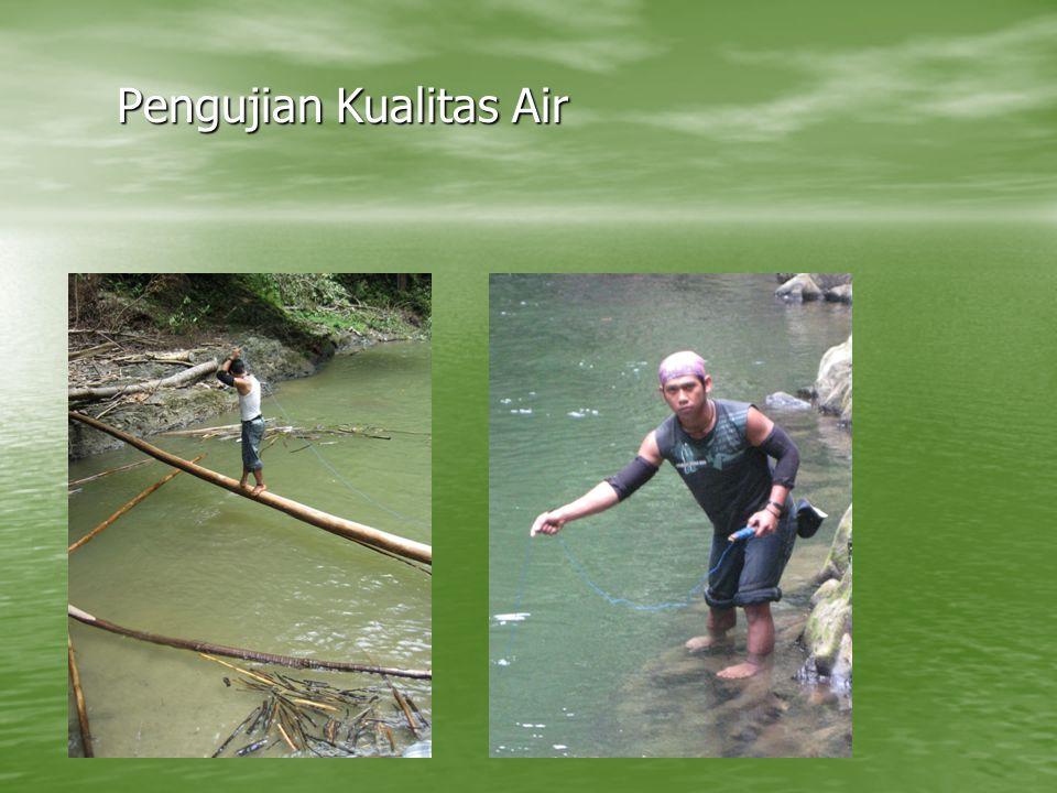 Pengujian Kualitas Air