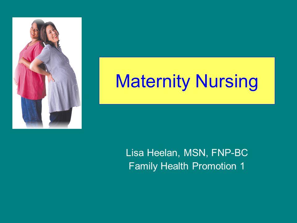Maternity Nursing Lisa Heelan, MSN, FNP-BC Family Health Promotion 1