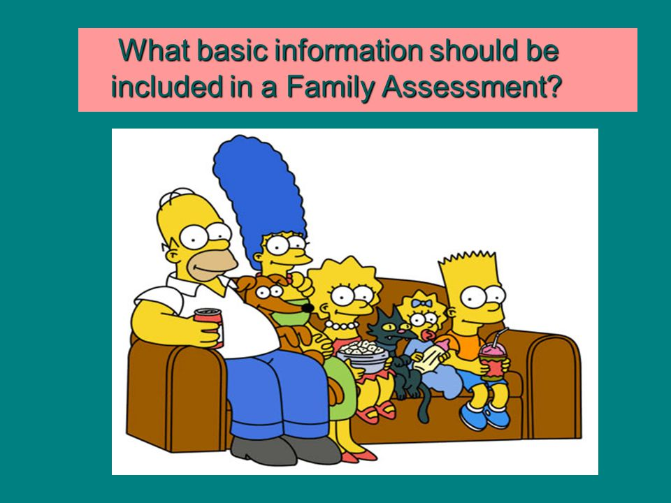 What basic information should be included in a Family Assessment? What basic information should be included in a Family Assessment?