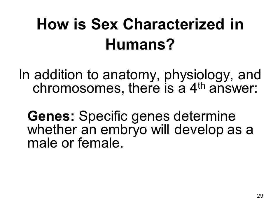 29 How is Sex Characterized in Humans.