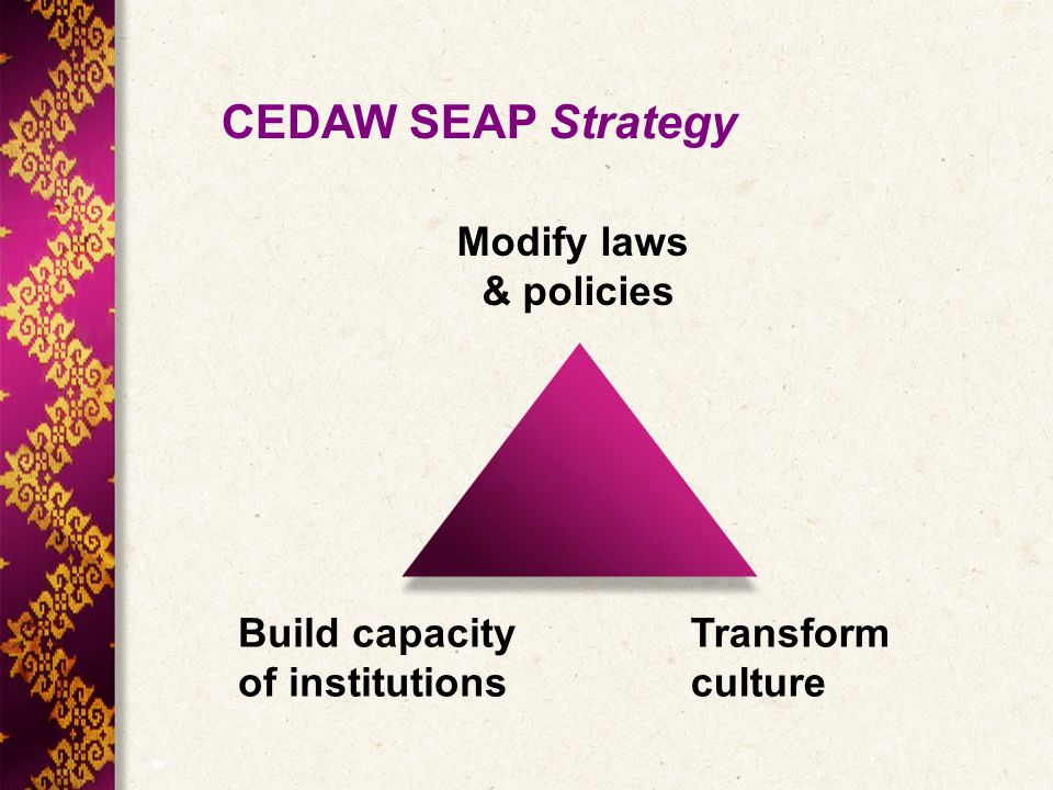 CEDAW SEAP Strategy Modify laws & policies Build capacity of institutions Transform culture