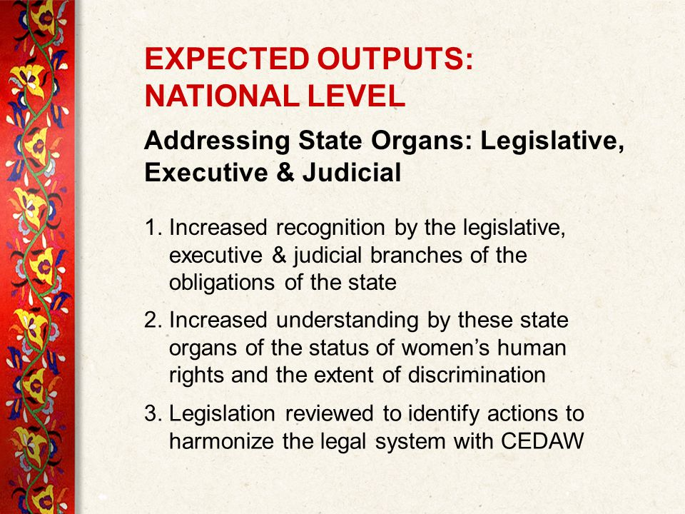 EXPECTED OUTPUTS: NATIONAL LEVEL Addressing State Organs: Legislative, Executive & Judicial 1.