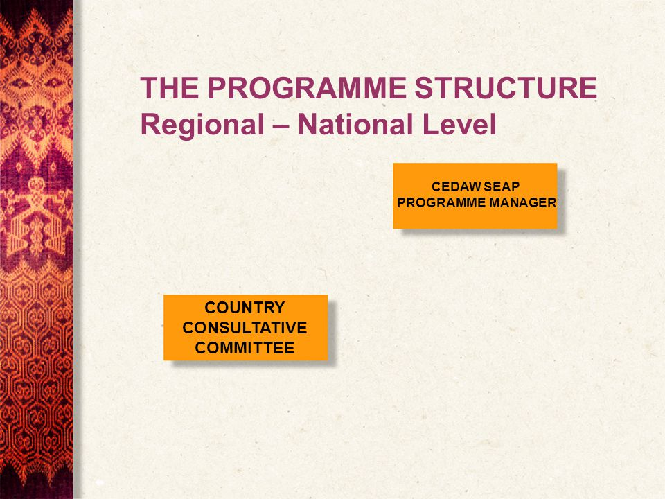 COUNTRY CONSULTATIVE COMMITTEE CEDAW SEAP PROGRAMME MANAGER THE PROGRAMME STRUCTURE Regional – National Level