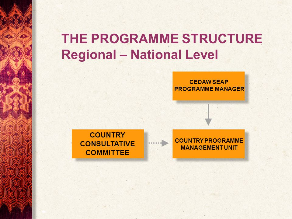 COUNTRY CONSULTATIVE COMMITTEE CEDAW SEAP PROGRAMME MANAGER COUNTRY PROGRAMME MANAGEMENT UNIT THE PROGRAMME STRUCTURE Regional – National Level