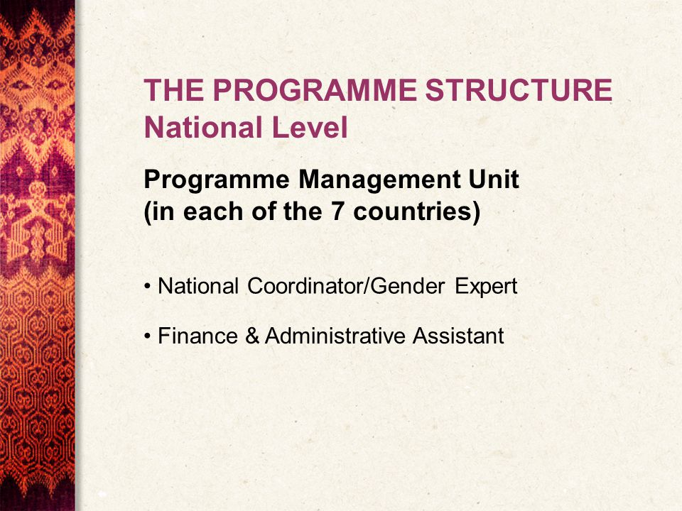 THE PROGRAMME STRUCTURE National Level Programme Management Unit (in each of the 7 countries) National Coordinator/Gender Expert Finance & Administrative Assistant