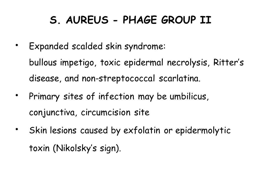 S. AUREUS - PHAGE GROUP II Expanded scalded skin syndrome: bullous impetigo, toxic epidermal necrolysis, Ritter's disease, and non-streptococcal scarl