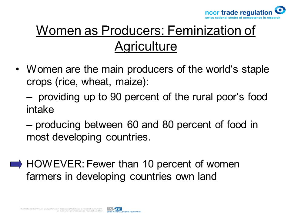 Women as Producers: Feminization of Agriculture Women are the main producers of the world's staple crops (rice, wheat, maize): – providing up to 90 percent of the rural poor's food intake – producing between 60 and 80 percent of food in most developing countries.