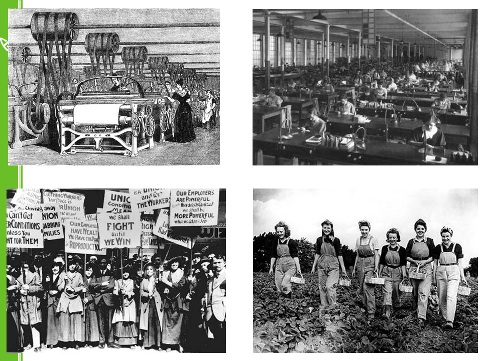 The 'gender revolutions' Contraceptive revolution Educational revolution Work revolution