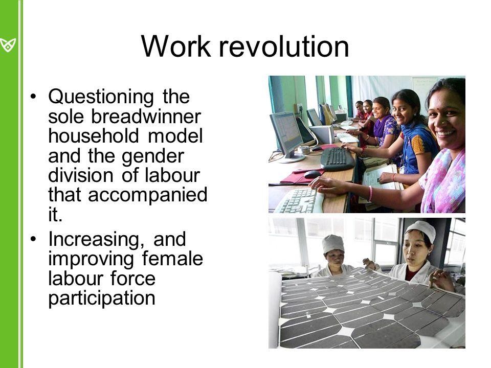 Education revolution –Korea: female tertiary enrolment rose from 20% in 1975 to 81% in 2005 (Tsuya et al.