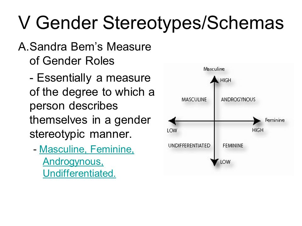 V Gender Stereotypes/Schemas A.Sandra Bem's Measure of Gender Roles - Essentially a measure of the degree to which a person describes themselves in a gender stereotypic manner.