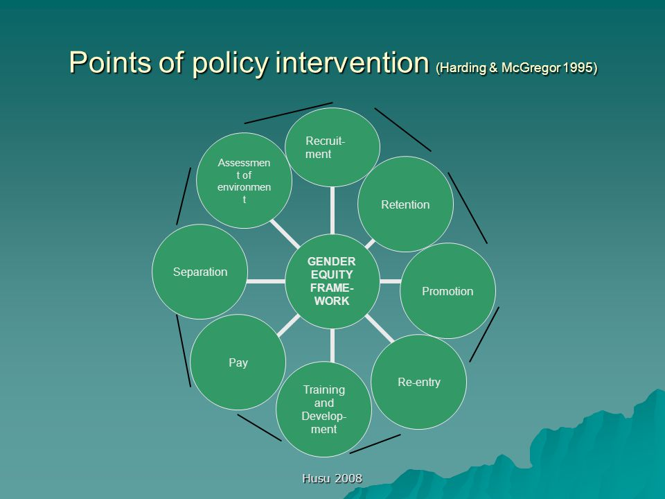 Husu 2008 Points of policy intervention (Harding & McGregor 1995)