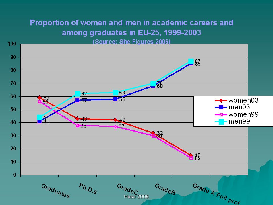 Husu 2008 Women in scientific careers: state of the art today  Relative advances but continuing contradictions  Can Europe afford the waste of talents.