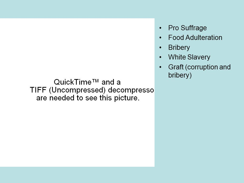 The Dirty Pool of Politics Pro Suffrage Food Adulteration Bribery White Slavery Graft (corruption and bribery)
