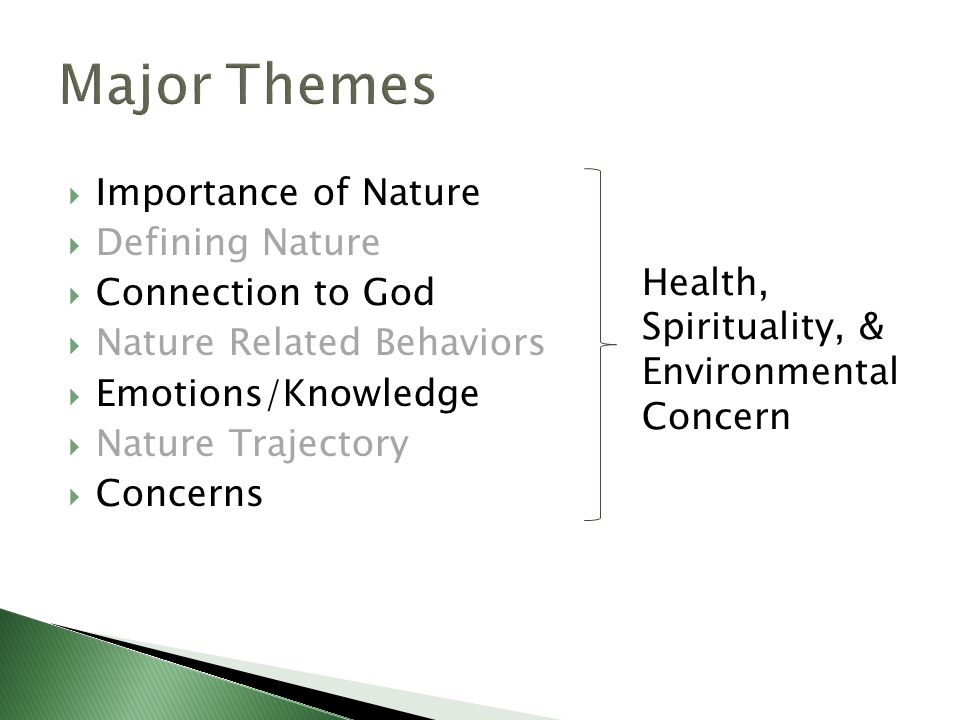  Importance of Nature  Defining Nature  Connection to God  Nature Related Behaviors  Emotions/Knowledge  Nature Trajectory  Concerns Health, Spirituality, & Environmental Concern