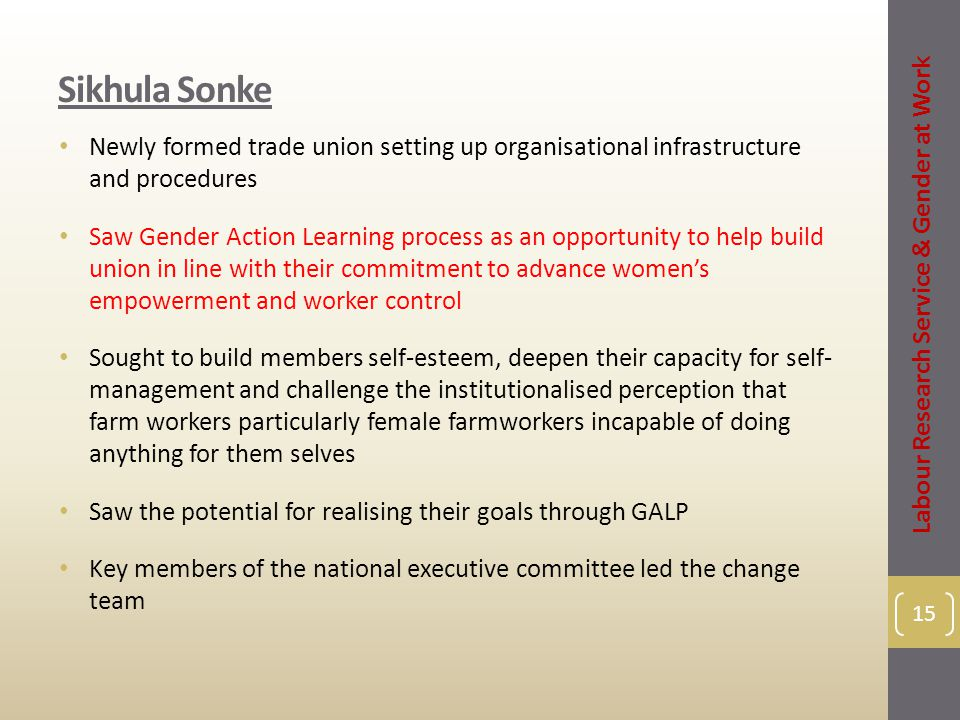 Sikhula Sonke Newly formed trade union setting up organisational infrastructure and procedures Saw Gender Action Learning process as an opportunity to help build union in line with their commitment to advance women's empowerment and worker control Sought to build members self-esteem, deepen their capacity for self- management and challenge the institutionalised perception that farm workers particularly female farmworkers incapable of doing anything for them selves Saw the potential for realising their goals through GALP Key members of the national executive committee led the change team 15 Labour Research Service & Gender at Work