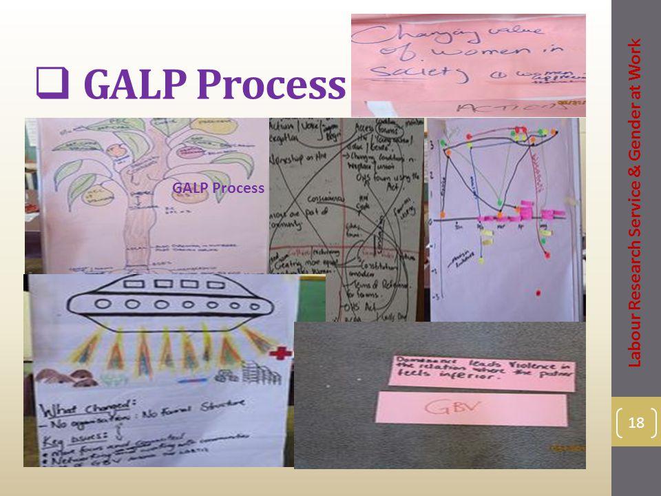  GALP Process 18 Labour Research Service & Gender at Work GALP Process
