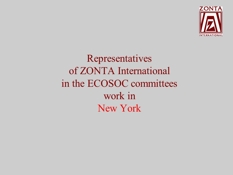 Representatives of ZONTA International in the ECOSOC committees work in