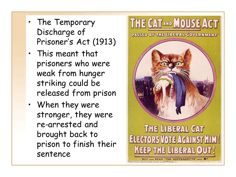 The Temporary Discharge of Prisoner's Act (1913) This meant that prisoners who were weak from hunger striking could be released from prison When they