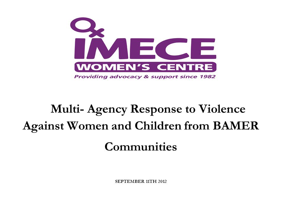 Multi- Agency Response to Violence Against Women and Children from BAMER Communities SEPTEMBER 11TH 2012