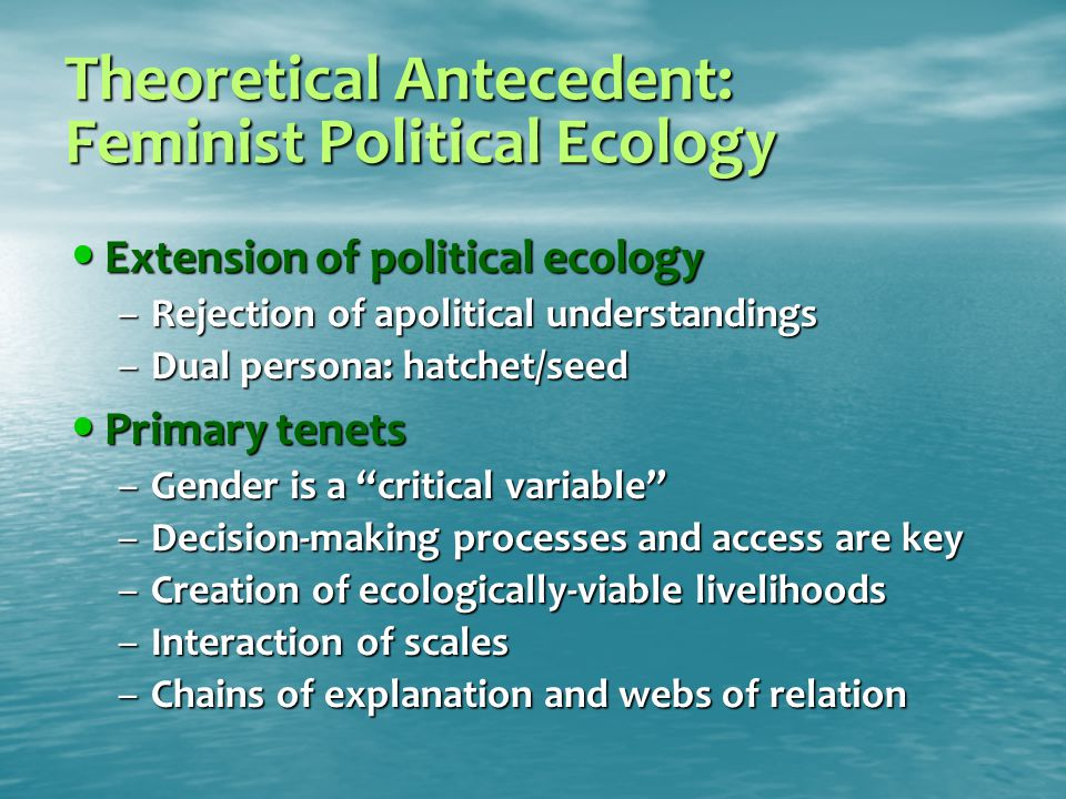 Theoretical Antecedent: Feminist Political Ecology Extension of political ecology Extension of political ecology –Rejection of apolitical understandings –Dual persona: hatchet/seed Primary tenets Primary tenets –Gender is a critical variable –Decision-making processes and access are key –Creation of ecologically-viable livelihoods –Interaction of scales –Chains of explanation and webs of relation