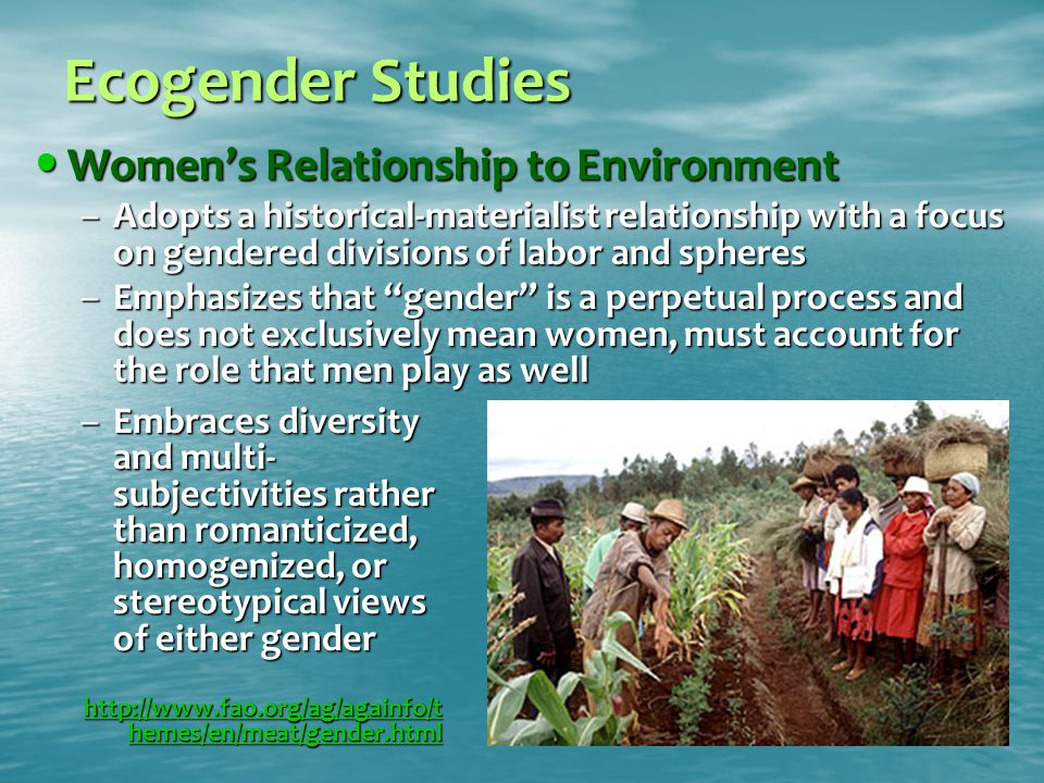Ecogender Studies Women's Relationship to Environment Women's Relationship to Environment –Adopts a historical-materialist relationship with a focus on gendered divisions of labor and spheres –Emphasizes that gender is a perpetual process and does not exclusively mean women, must account for the role that men play as well –Embraces diversity and multi- subjectivities rather than romanticized, homogenized, or stereotypical views of either gender http://www.fao.org/ag/againfo/t hemes/en/meat/gender.html