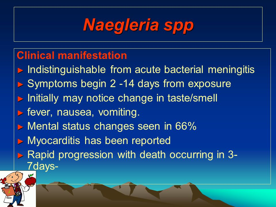 Naegleria spp Clinical manifestation ► ► Indistinguishable from acute bacterial meningitis ► ► Symptoms begin 2 -14 days from exposure ► ► Initially m
