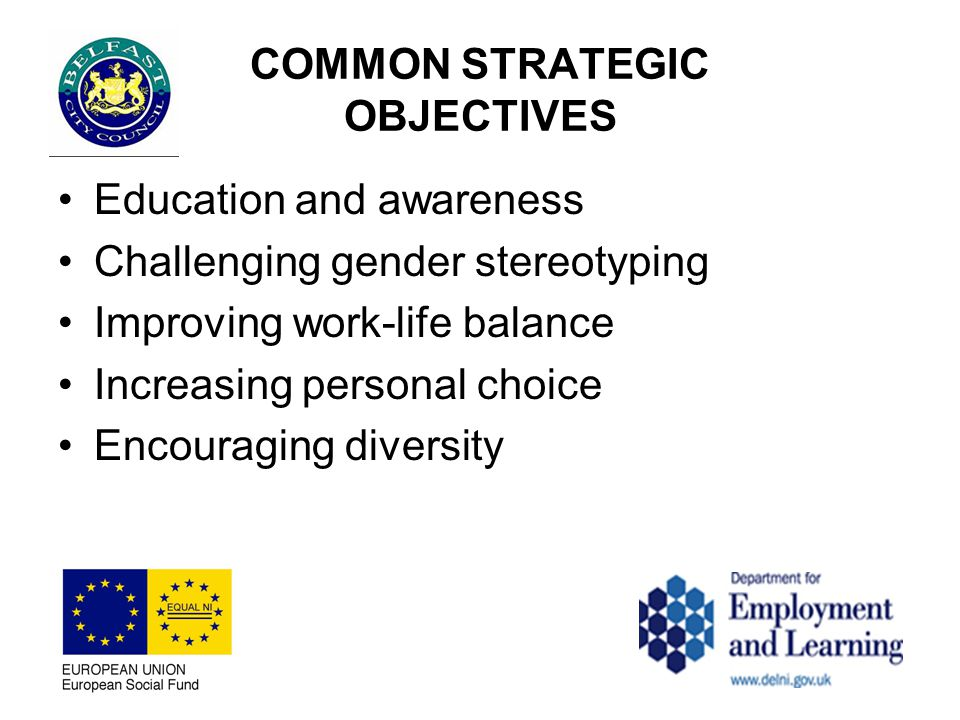 COMMON STRATEGIC OBJECTIVES Education and awareness Challenging gender stereotyping Improving work-life balance Increasing personal choice Encouraging diversity