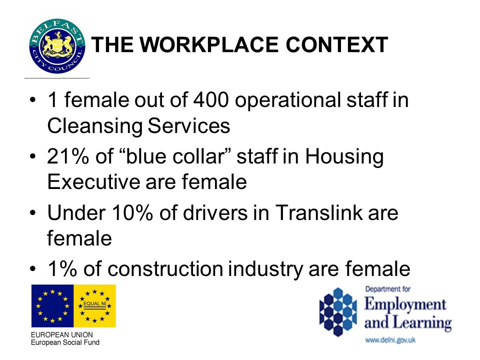 THE WORKPLACE CONTEXT 1 female out of 400 operational staff in Cleansing Services 21% of blue collar staff in Housing Executive are female Under 10% of drivers in Translink are female 1% of construction industry are female