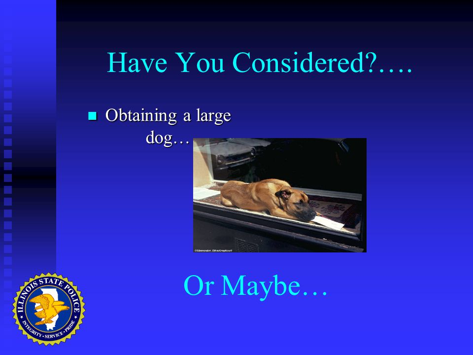 Have You Considered …. Obtaining a large dog… Obtaining a large dog… Or Maybe…